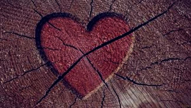 13 Princípios Sábios Caso O Seu Namoro Termine Conexão Conselho